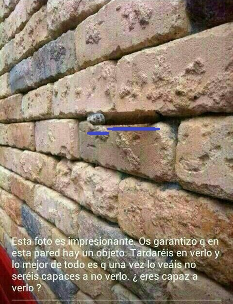 Solución al objeto en la pared