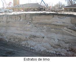 estratos1