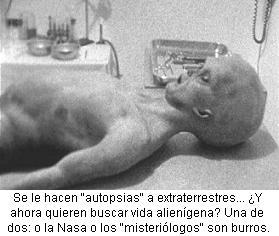 autopsy2