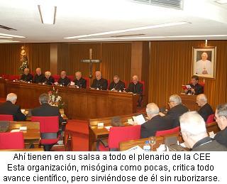 plenario d la CEE-nov-2008