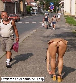 Un paseo por el barrio de Siesp