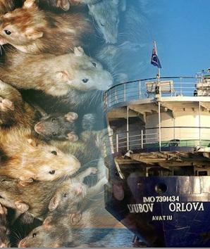 Barco Lyubov Orlova