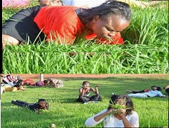 creyentes comiendo hierba 2