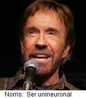 El descerebrado Chuck Norris
