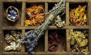 Plantas supuestamente medicinales