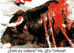 Esto no es cultura es tortura